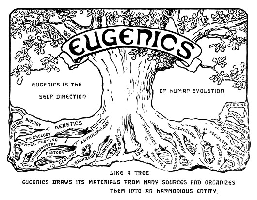 an introduction to the analysis of eugenics Introduction to eugenics this article summarizes a booklet from american life league that gives stay on top of the latest catholic news and analysis from.