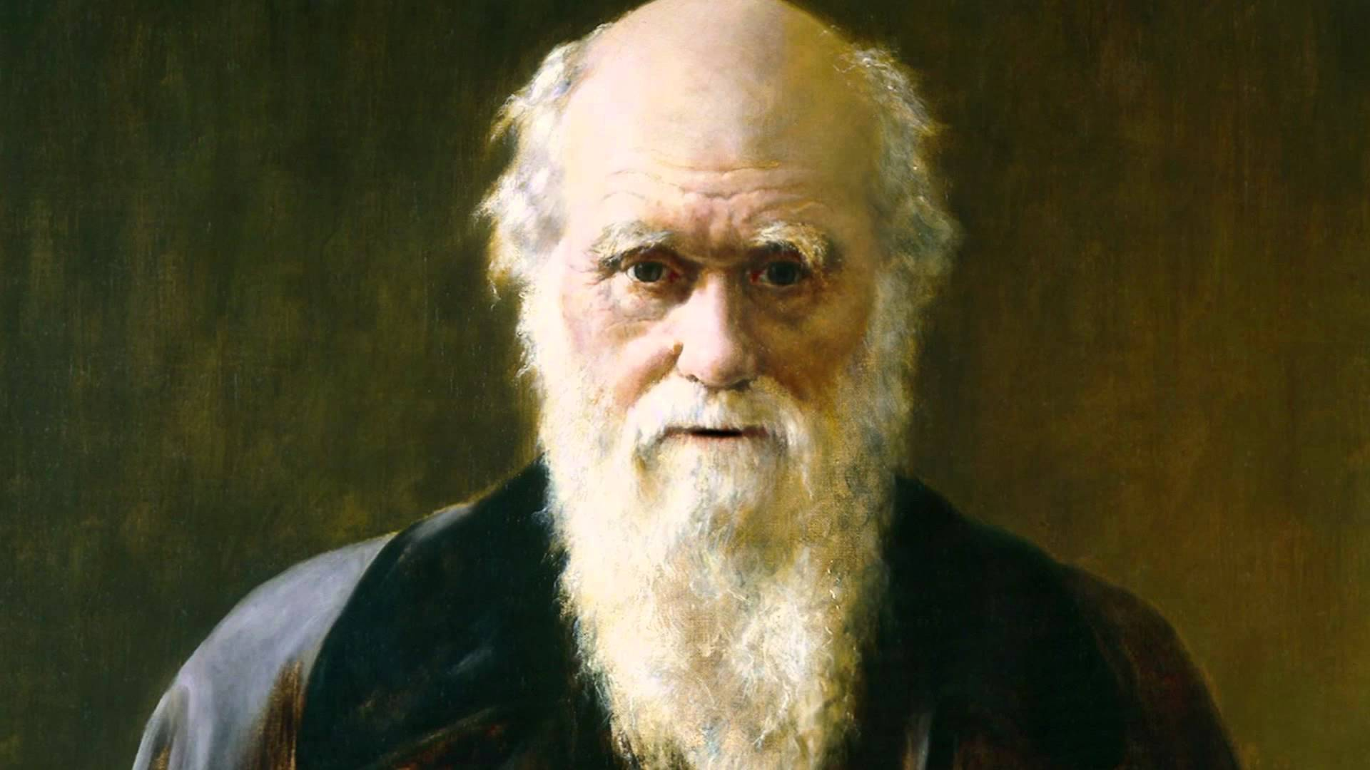 Read <i>The origin of species</i> by Charles Darwin. Its great, its free, and it is nothing but alt-right