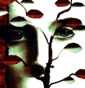 "A review of ""Speak"" by Laurie Halse Anderson"